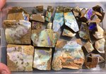"880 GRAMM/31 Stck BOULDER ROUGH OPAL PARCEL ""P1"" GREEN-TURQUISE-RED"